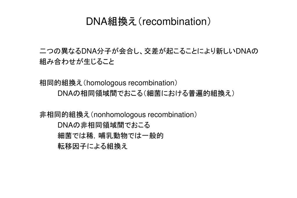 DNA組換え(recombination)