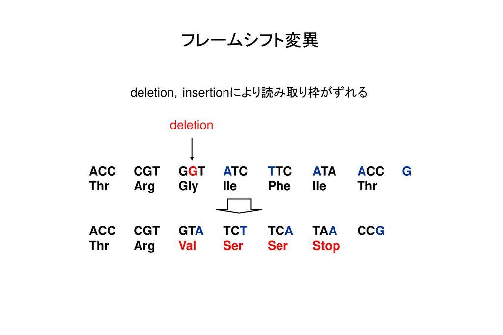 フレームシフト変異 deletion,insertionにより読み取り枠がずれる deletion