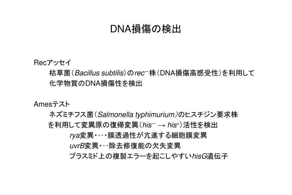 DNA損傷の検出 Recアッセイ 枯草菌(Bacillus subtilis)のrec-株(DNA損傷高感受性)を利用して