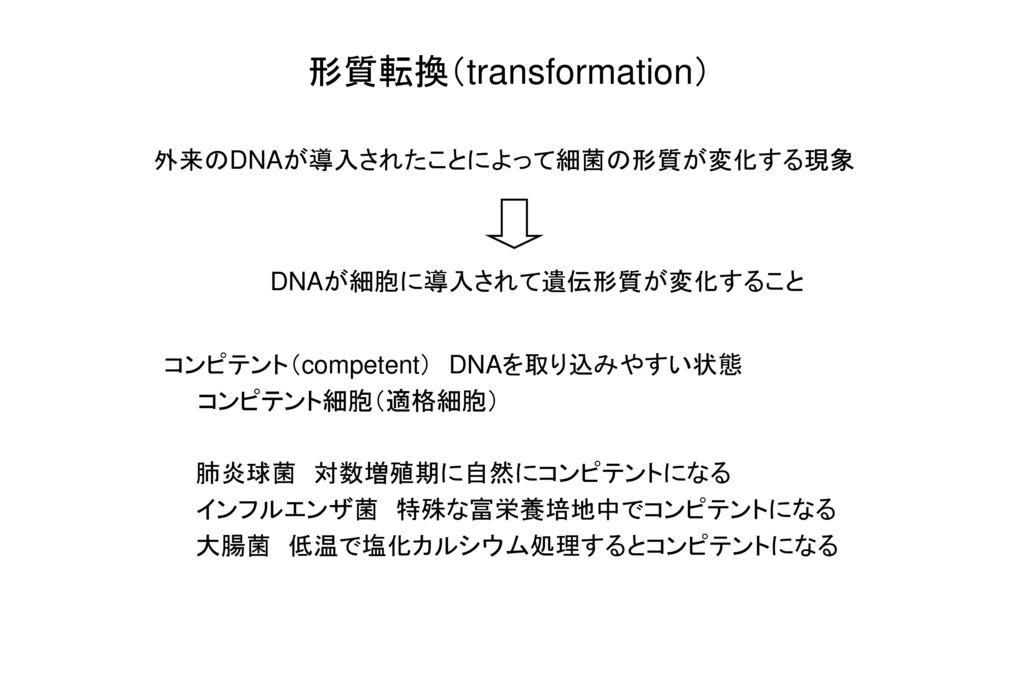 形質転換(transformation)
