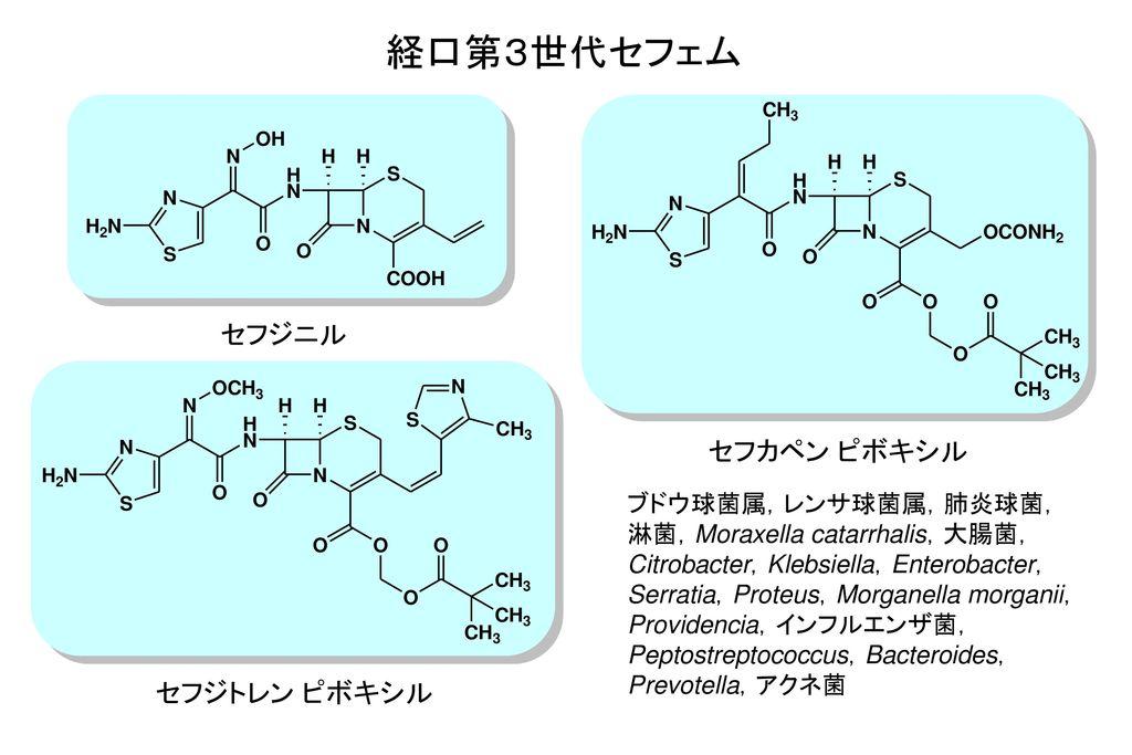 経口第3世代セフェム セフジニル セフカペン ピボキシル セフジトレン ピボキシル ブドウ球菌属,レンサ球菌属,肺炎球菌,