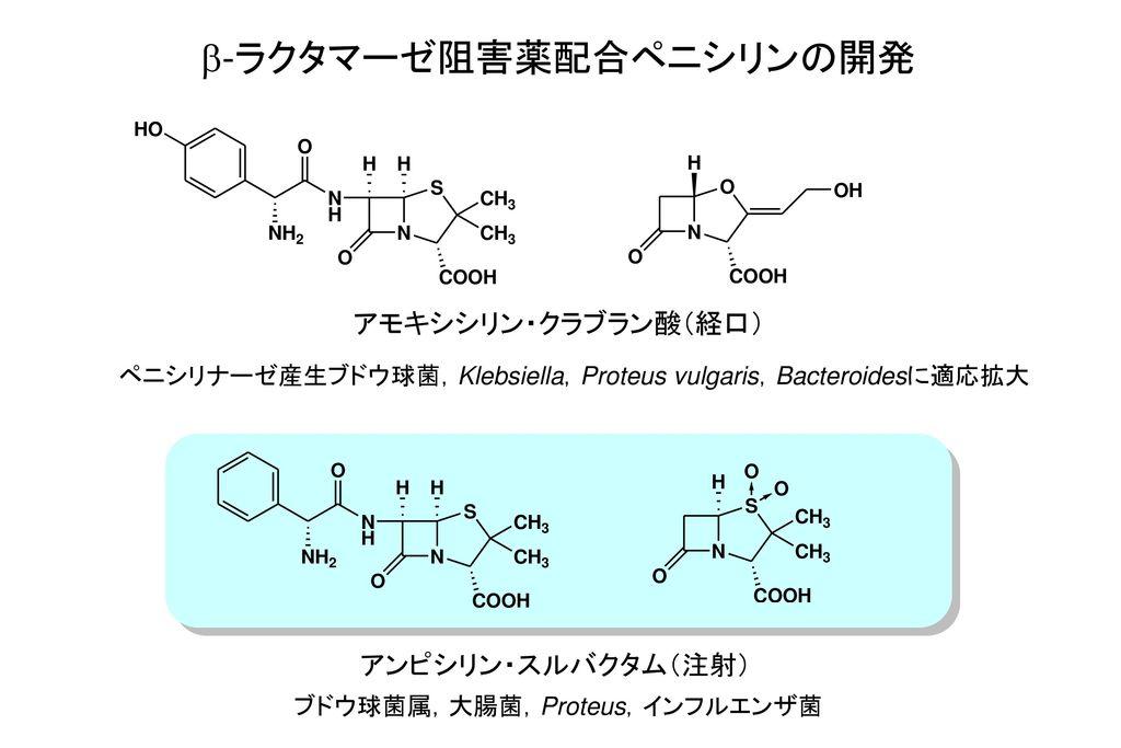 b-ラクタマーゼ阻害薬配合ペニシリンの開発