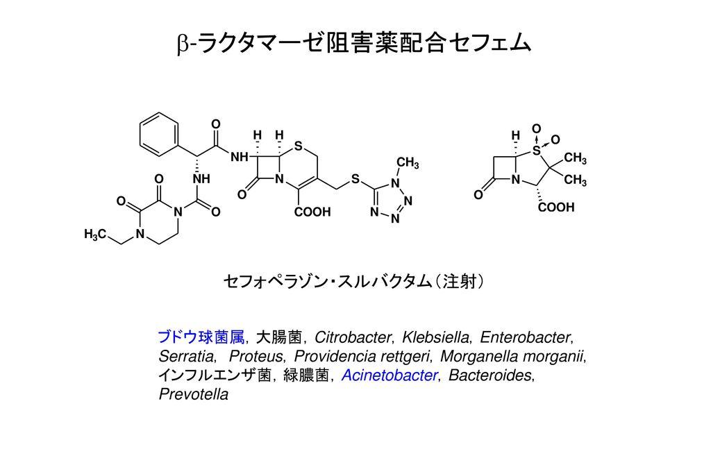 b-ラクタマーゼ阻害薬配合セフェム セフォペラゾン・スルバクタム(注射)