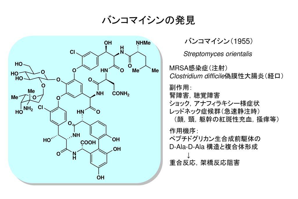 バンコマイシンの発見 バンコマイシン(1955) Streptomyces orientalis MRSA感染症(注射)