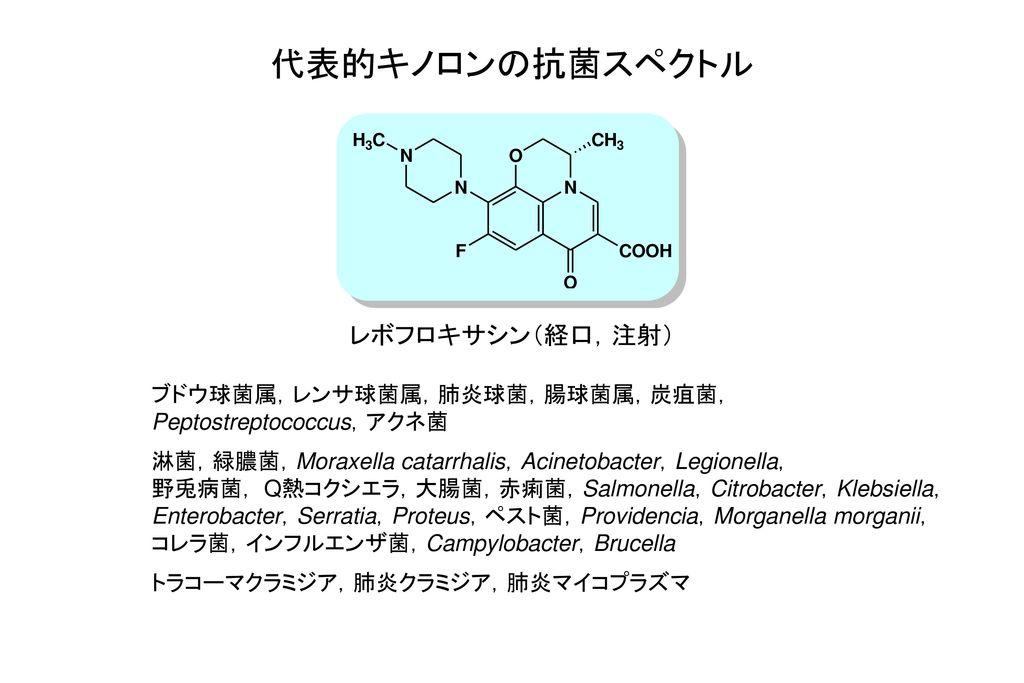 代表的キノロンの抗菌スペクトル レボフロキサシン(経口,注射) ブドウ球菌属,レンサ球菌属,肺炎球菌,腸球菌属,炭疽菌,