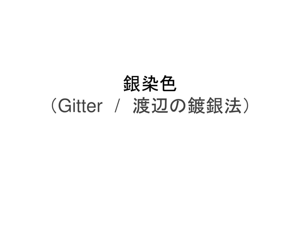 銀染色 (Gitter / 渡辺の鍍銀法)