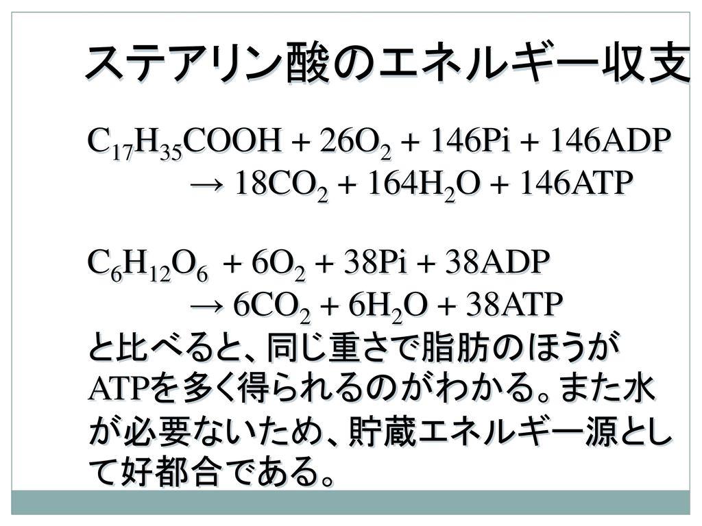 ステアリン酸のエネルギー収支 C17H35COOH + 26O2 + 146Pi + 146ADP