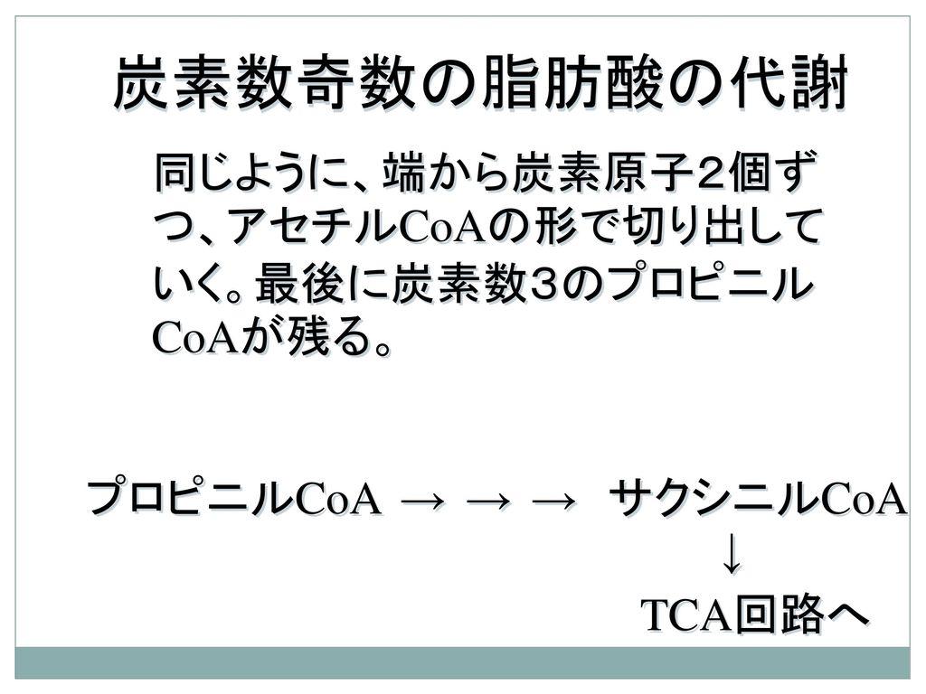 炭素数奇数の脂肪酸の代謝 同じように、端から炭素原子2個ずつ、アセチルCoAの形で切り出していく。最後に炭素数3のプロピニルCoAが残る。