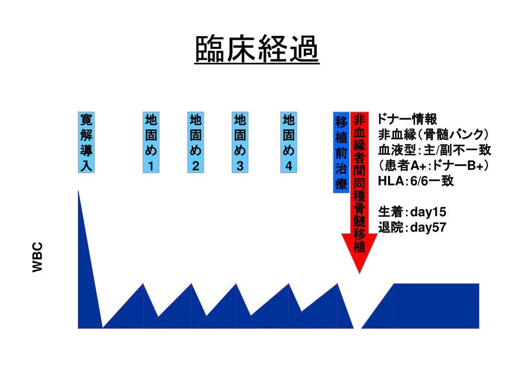 臨床経過 ドナー情報 非血縁(骨髄バンク) 血液型:主/副不一致 (患者A+:ドナーB+) HLA:6/6一致 生着:day15