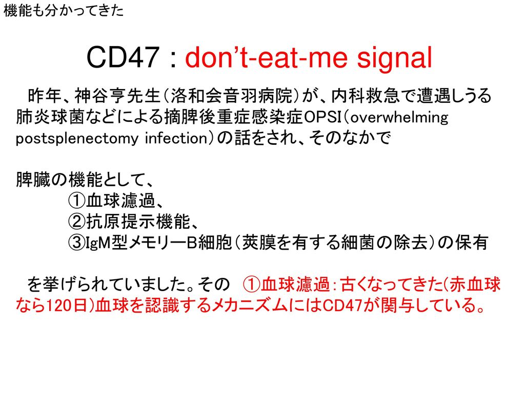 CD47 : don't-eat-me signal