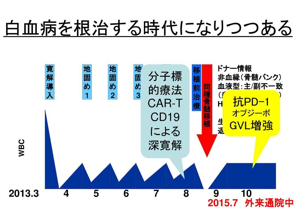 白血病を根治する時代になりつつある 分子標的療法CAR-T CD19 抗PD-1 による 深寛解 GVL増強
