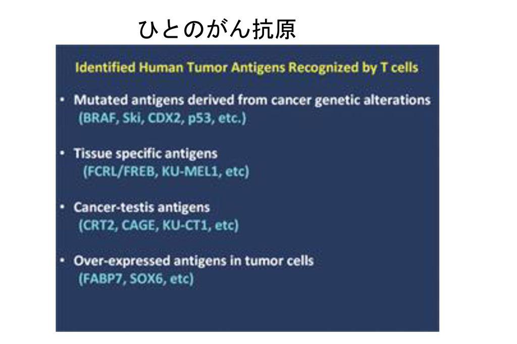 ひとのがん抗原