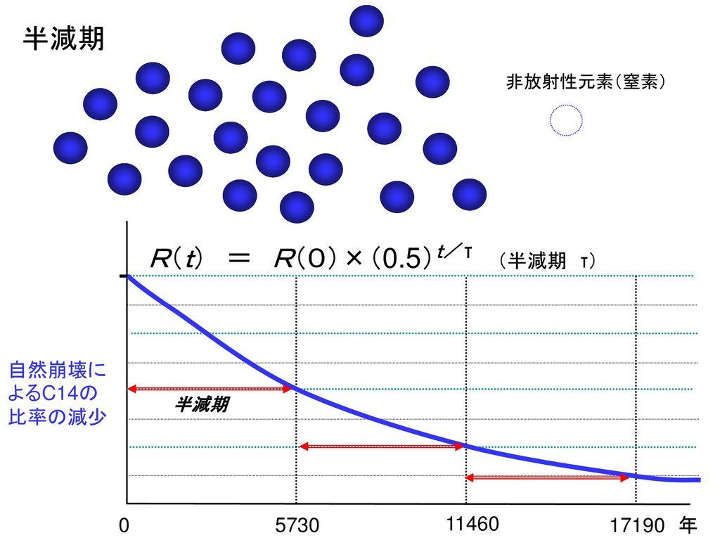 R(t) = R(0)×(0.5)t/τ (半減期 τ)