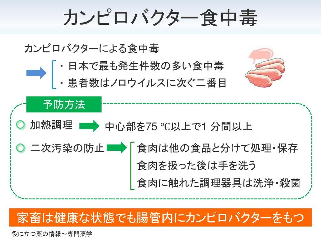 家畜は健康な状態でも腸管内にカンピロバクターをもつ