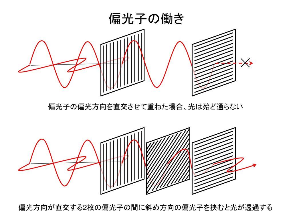偏光子の働き 偏光子の偏光方向を直交させて重ねた場合、光は殆ど通らない