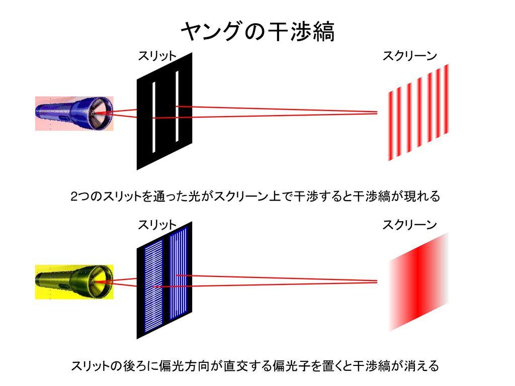 ヤングの干渉縞 2つのスリットを通った光がスクリーン上で干渉すると干渉縞が現れる スリット スクリーン スリット スクリーン