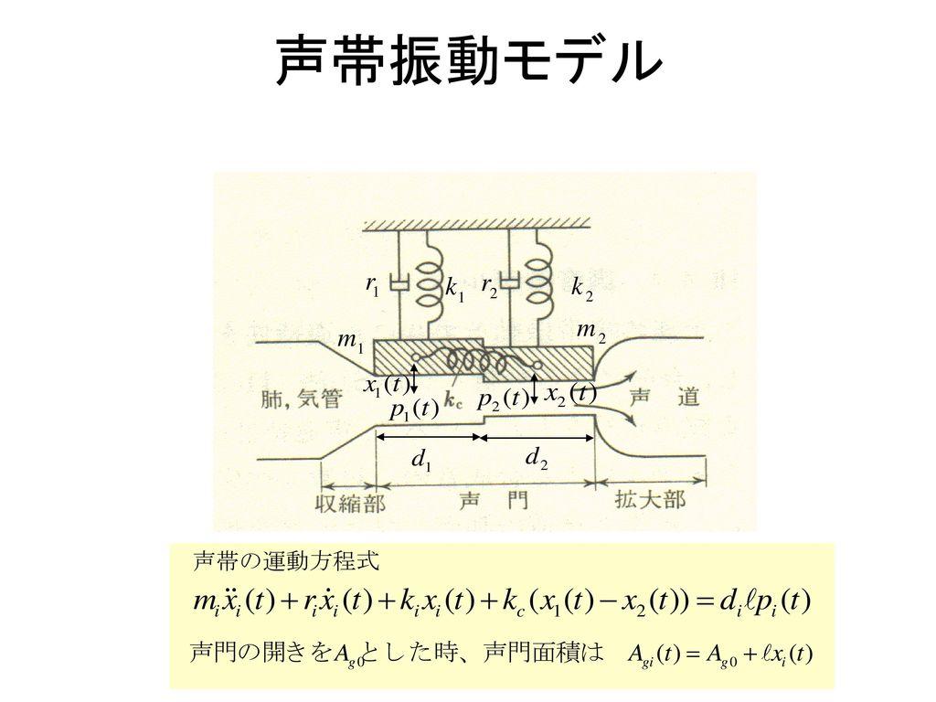 声帯振動モデル 1 m 2 k r 声帯の運動方程式