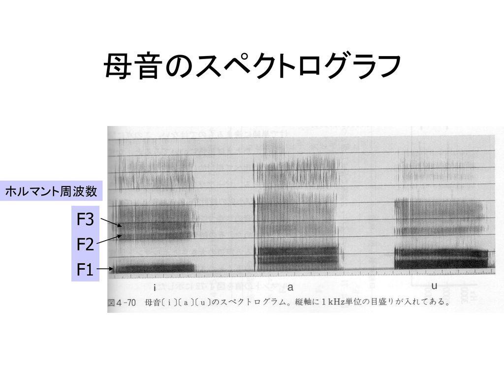 母音のスペクトログラフ ホルマント周波数 F3 F2 F1