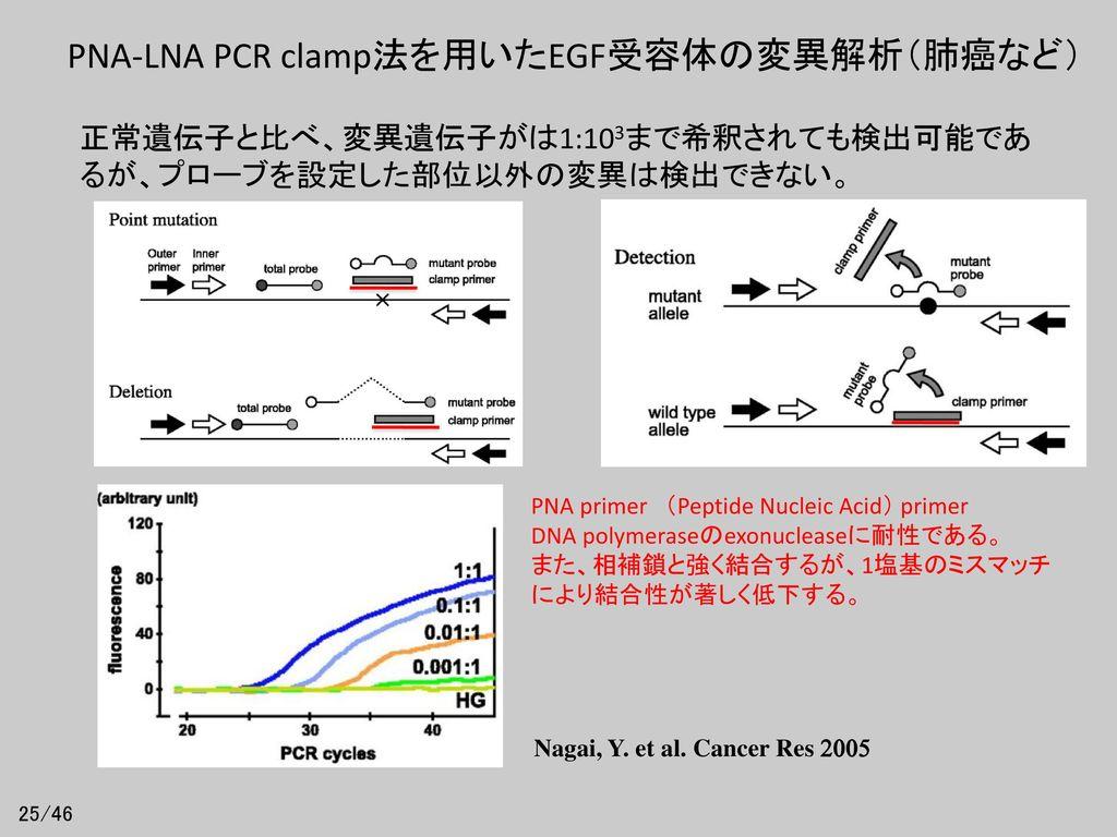 PNA-LNA PCR clamp法を用いたEGF受容体の変異解析(肺癌など)