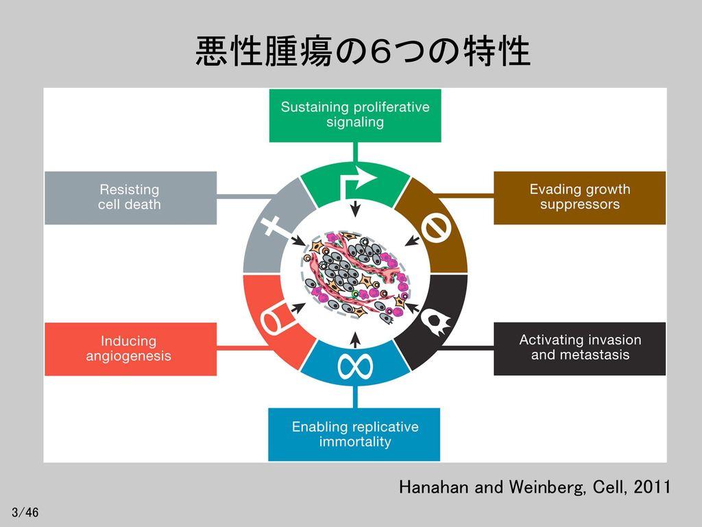 悪性腫瘍の6つの特性 Hanahan and Weinberg, Cell, 2011 3/46
