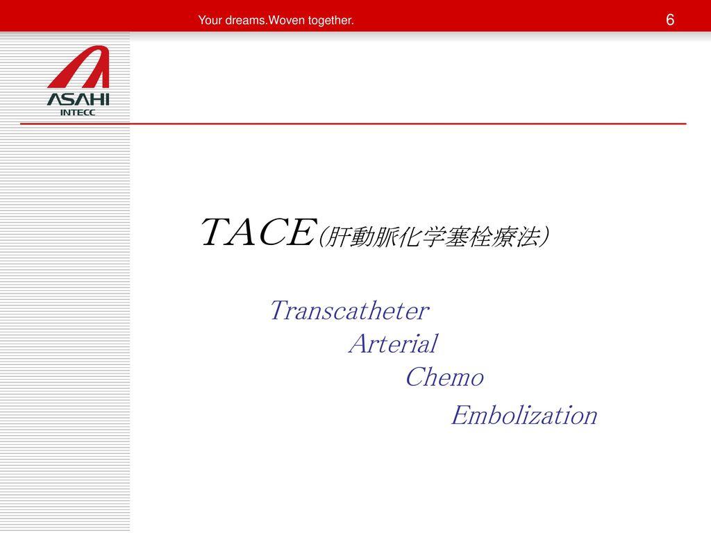 TACE(肝動脈化学塞栓療法) Transcatheter Arterial Chemo Embolization