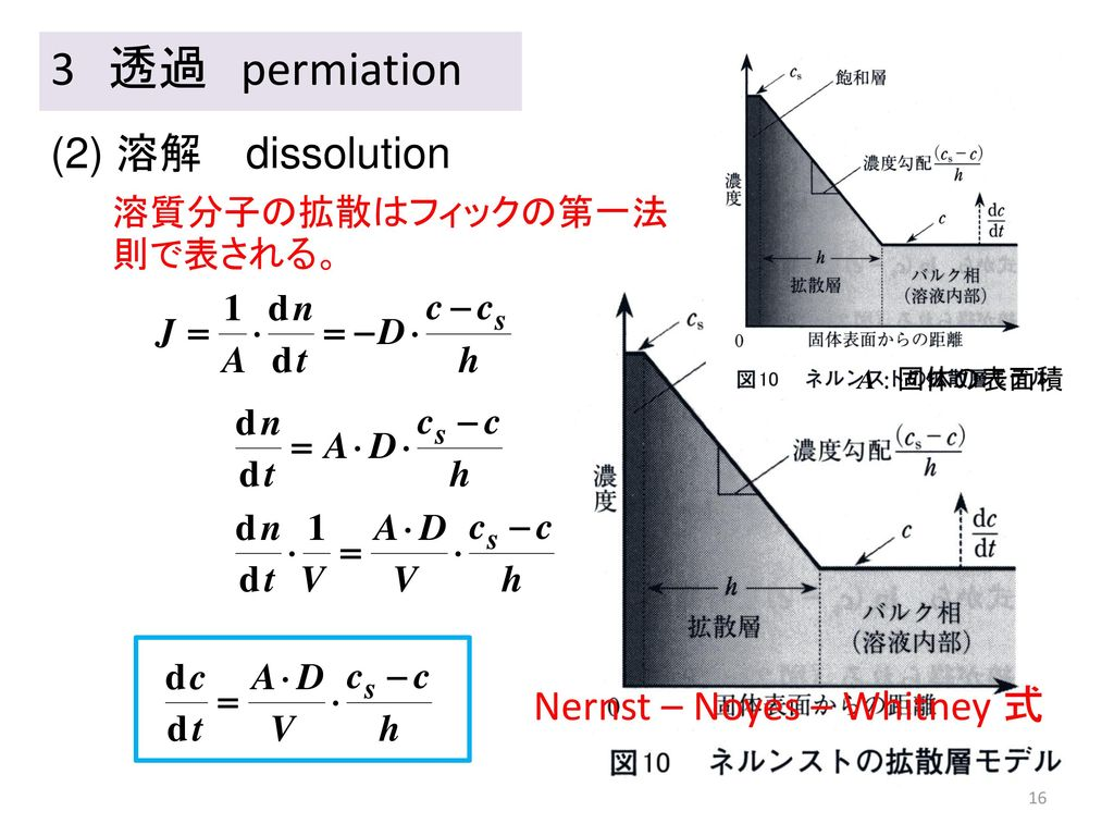 3 透過 permiation (2) 溶解 dissolution Nernst – Noyes – Whitney 式
