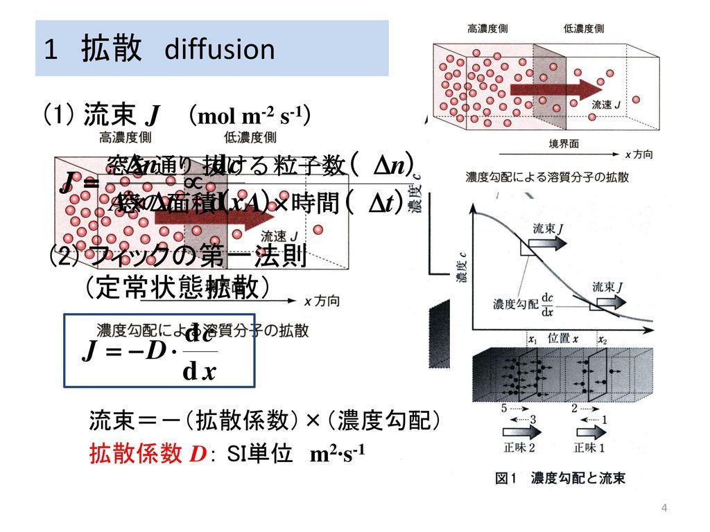 1 拡散 diffusion 1 拡散 diffusion (1) 流束 J (mol m-2 s-1) (2) フィックの第一法則