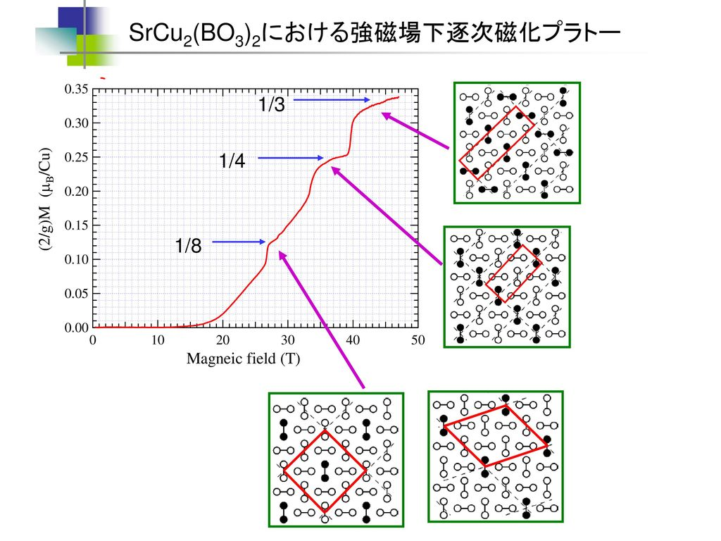 SrCu2(BO3)2における強磁場下逐次磁化プラトー
