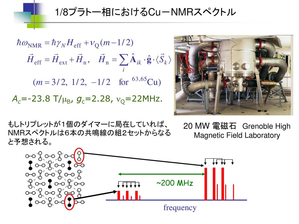 20 MW 電磁石 Grenoble High Magnetic Field Laboratory