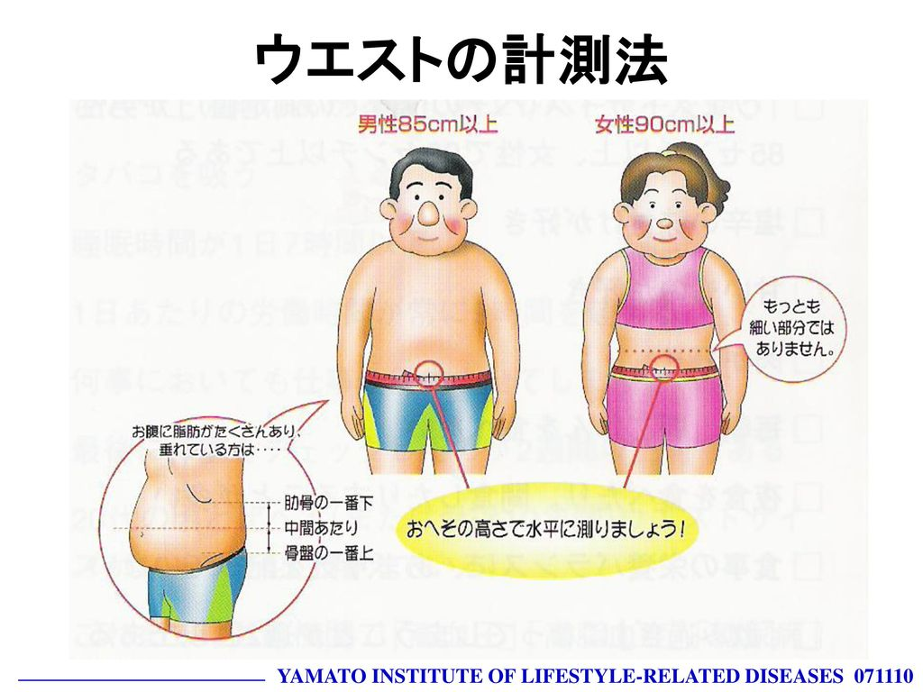 ウエストの計測法 YAMATO INSTITUTE OF LIFESTYLE-RELATED DISEASES