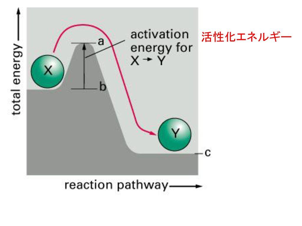 活性化エネルギー
