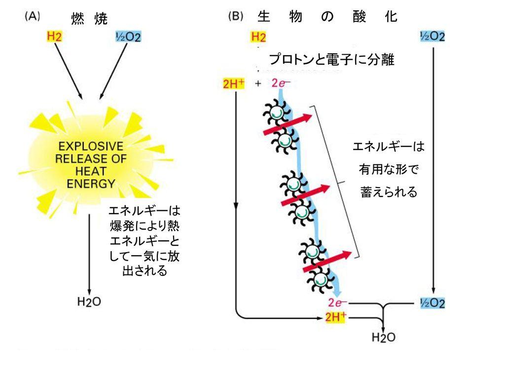 エネルギーは爆発により熱エネルギーとして一気に放出される