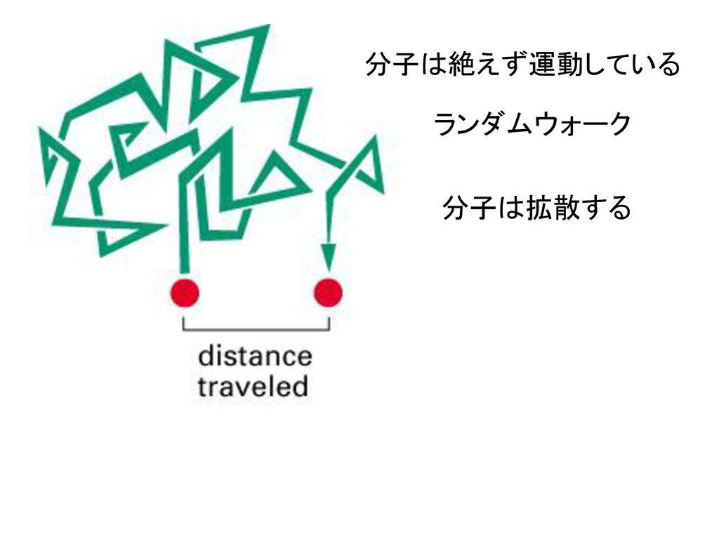 分子は絶えず運動している ランダムウォーク 分子は拡散する