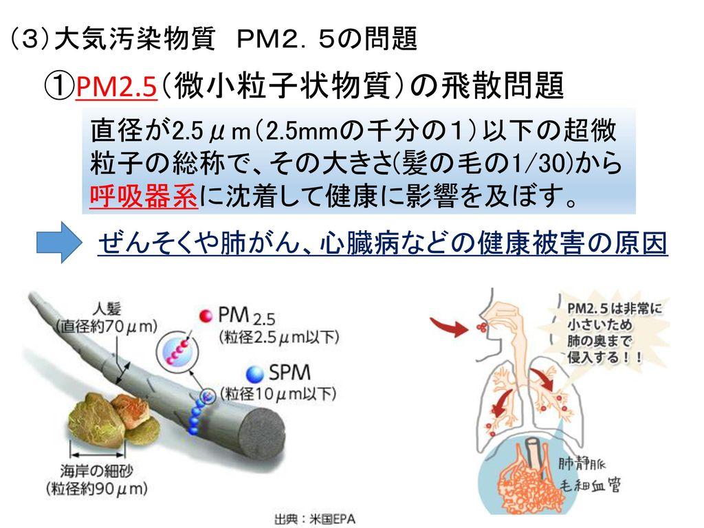①PM2.5(微小粒子状物質)の飛散問題 (3)大気汚染物質 PM2.5の問題