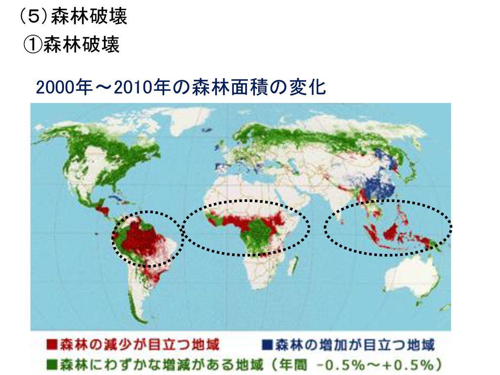(5)森林破壊 ①森林破壊 2000年~2010年の森林面積の変化