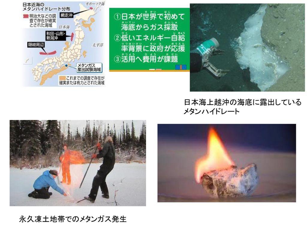 日本海上越沖の海底に露出している メタンハイドレート
