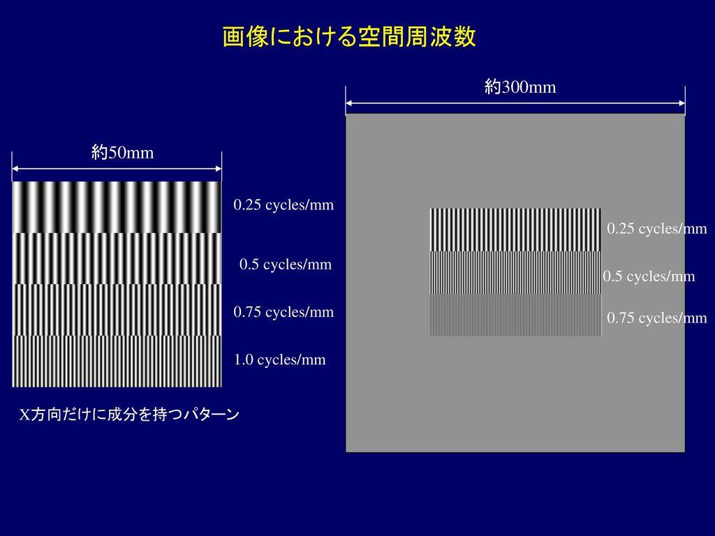 画像における空間周波数 約300mm 約50mm 0.25 cycles/mm 0.25 cycles/mm 0.5 cycles/mm