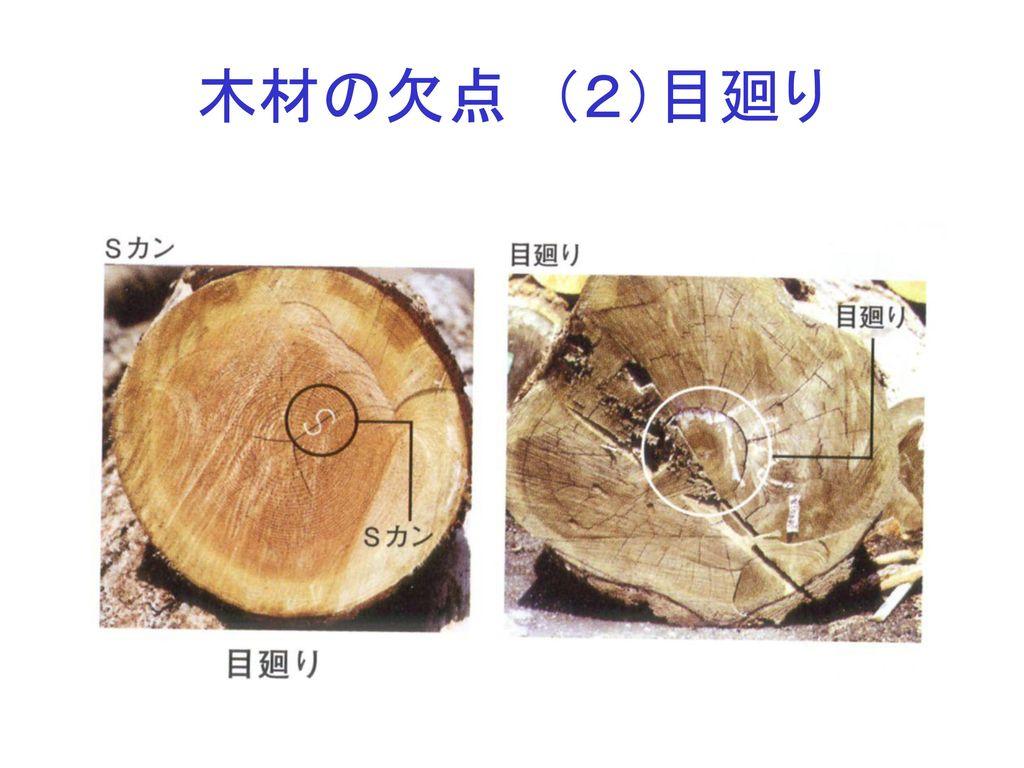 木材の欠点 (2)目廻り
