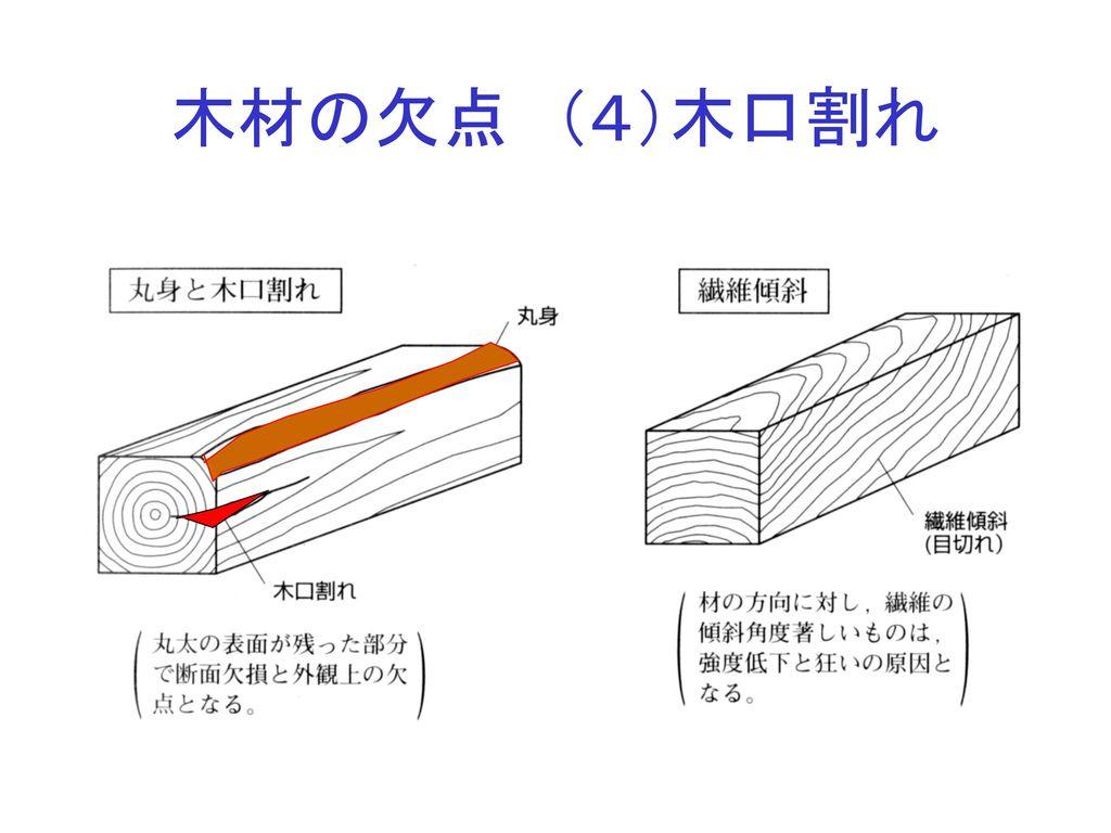 木材の欠点 (4)木口割れ