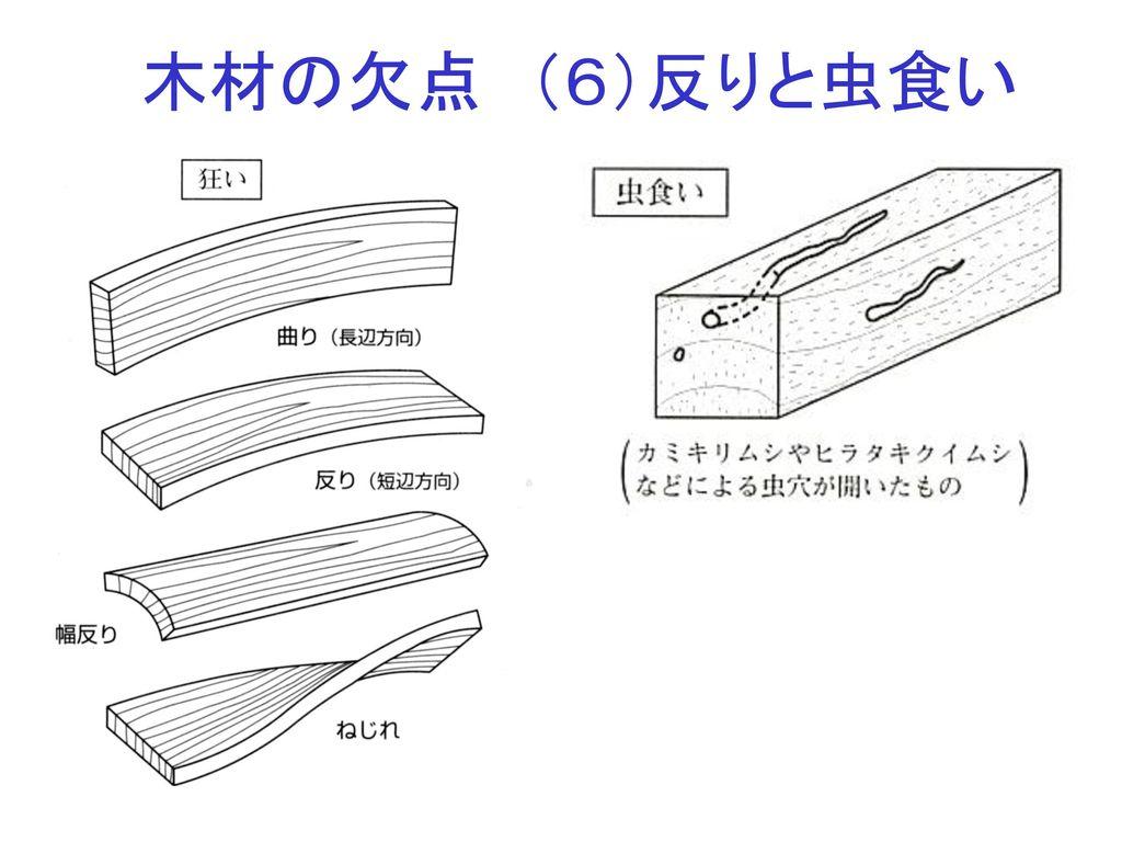 木材の欠点 (6)反りと虫食い