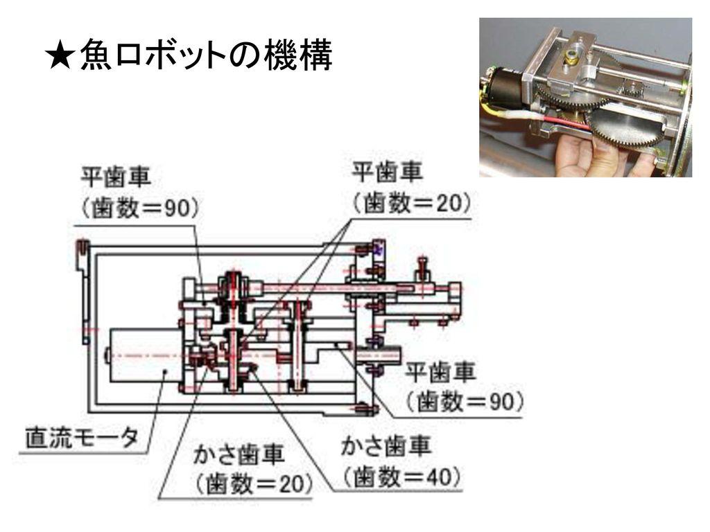 ★魚ロボットの機構
