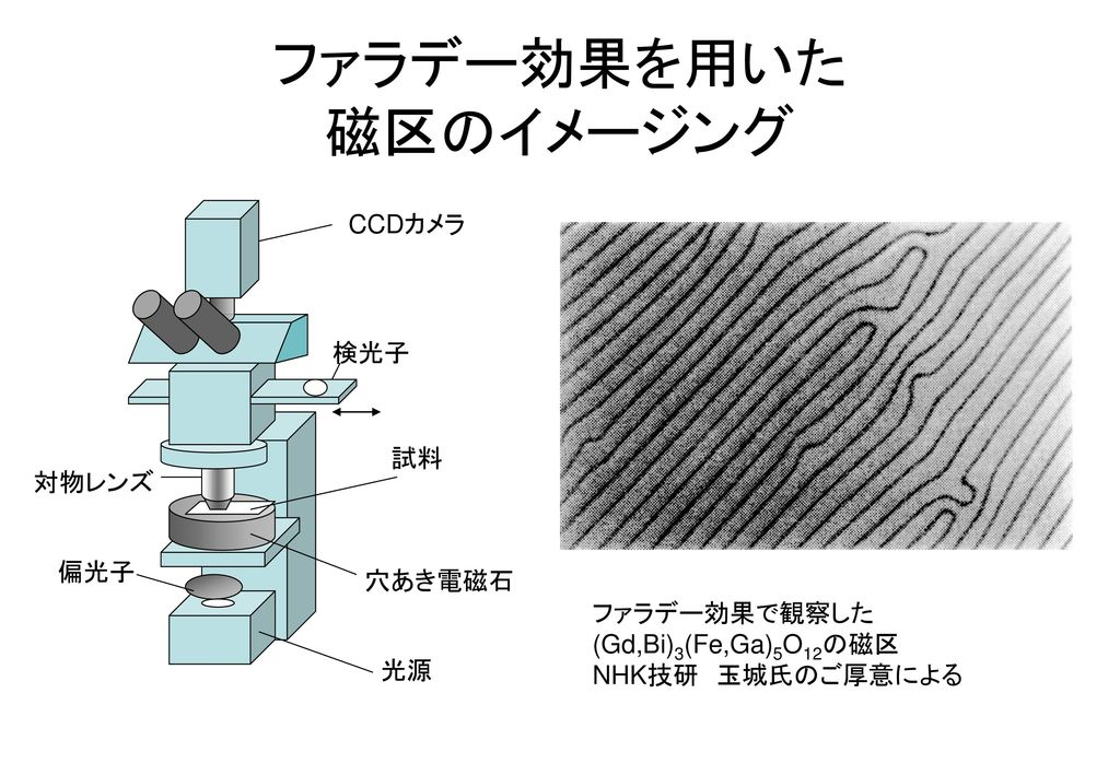 ファラデー効果を用いた 磁区のイメージング