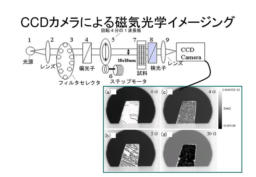 CCDカメラによる磁気光学イメージング