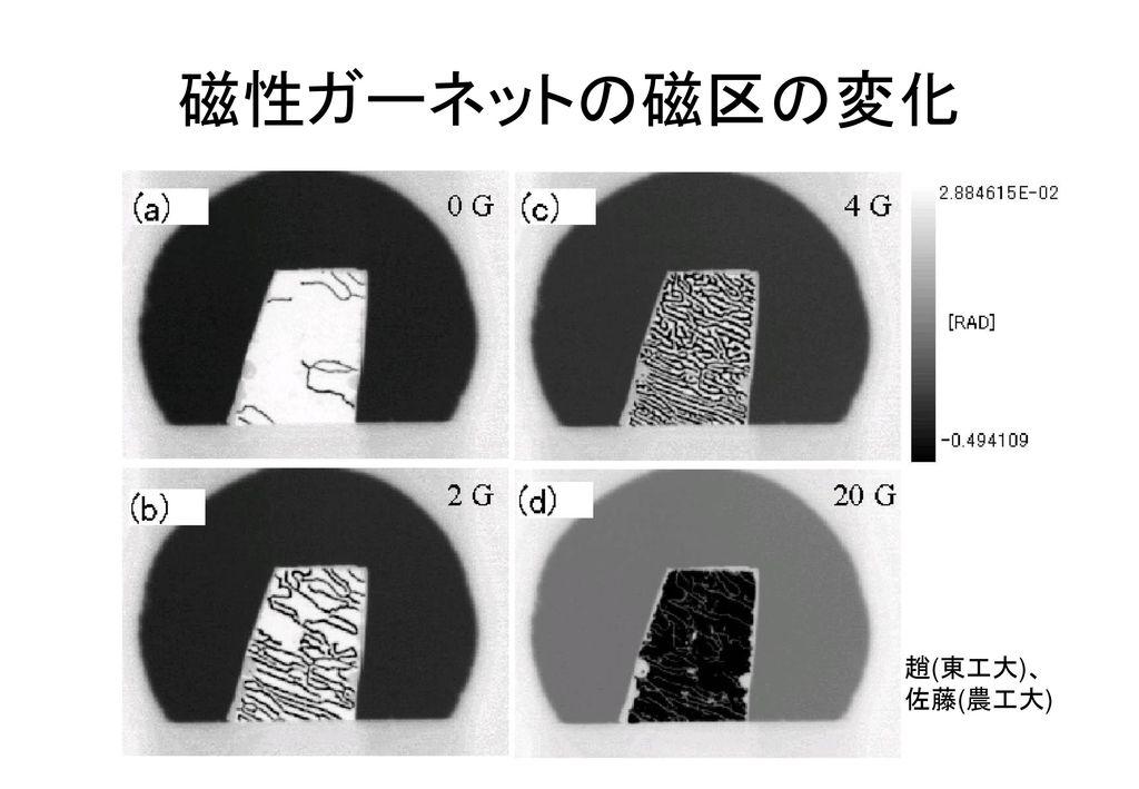 磁性ガーネットの磁区の変化 趙(東工大)、 佐藤(農工大)