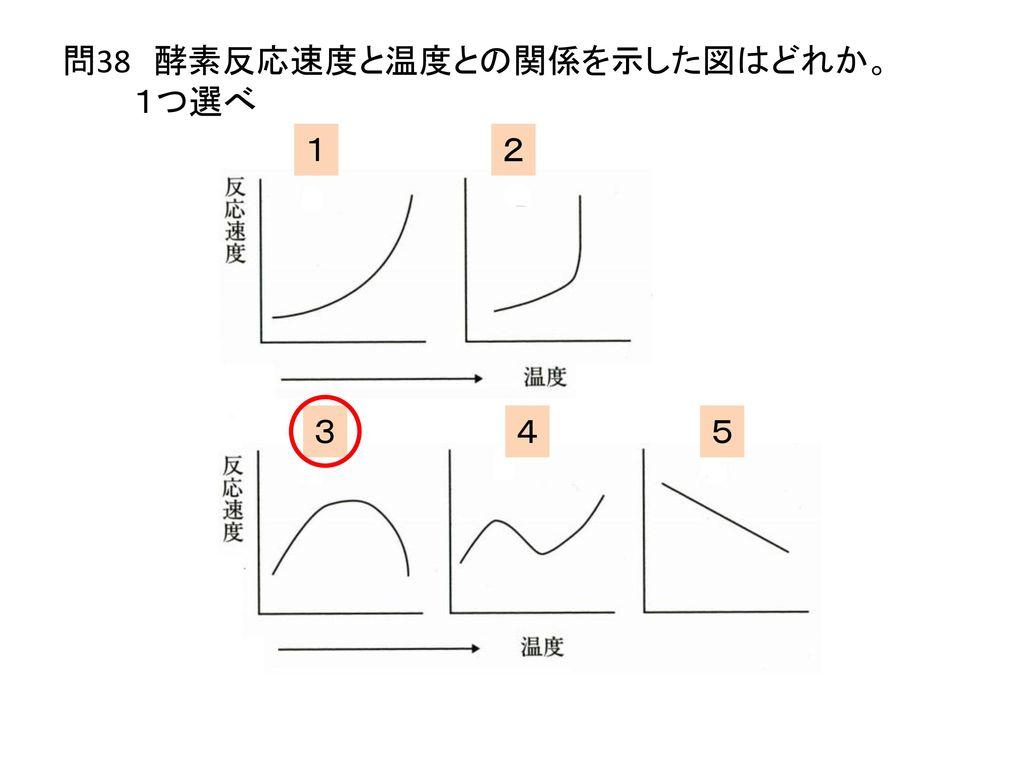 問38 酵素反応速度と温度との関係を示した図はどれか。 1つ選べ