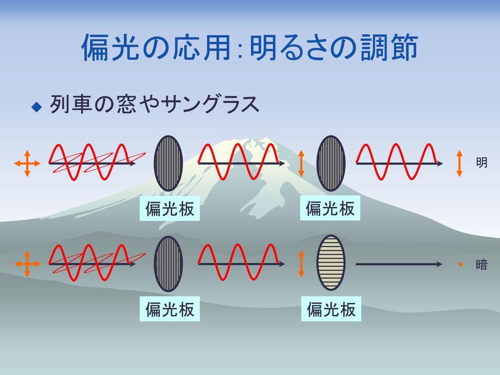 偏光の応用:明るさの調節 列車の窓やサングラス 偏光板 明 偏光板 暗