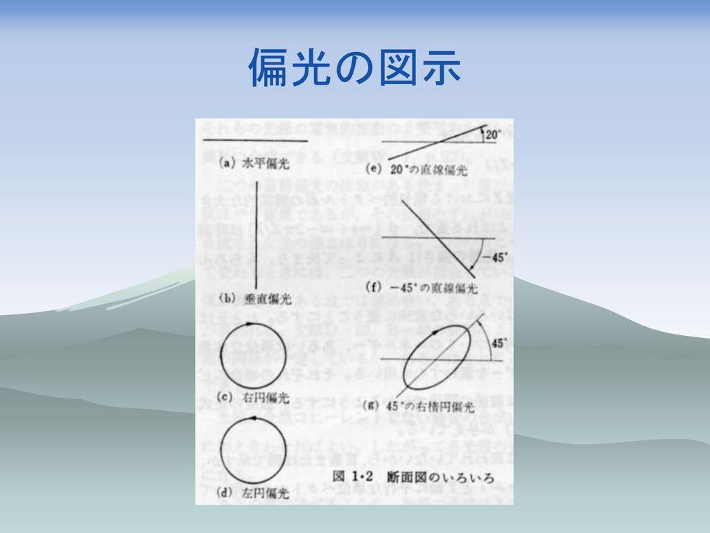 偏光の図示