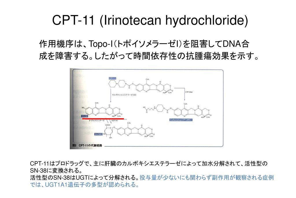 CPT-11 (Irinotecan hydrochloride)