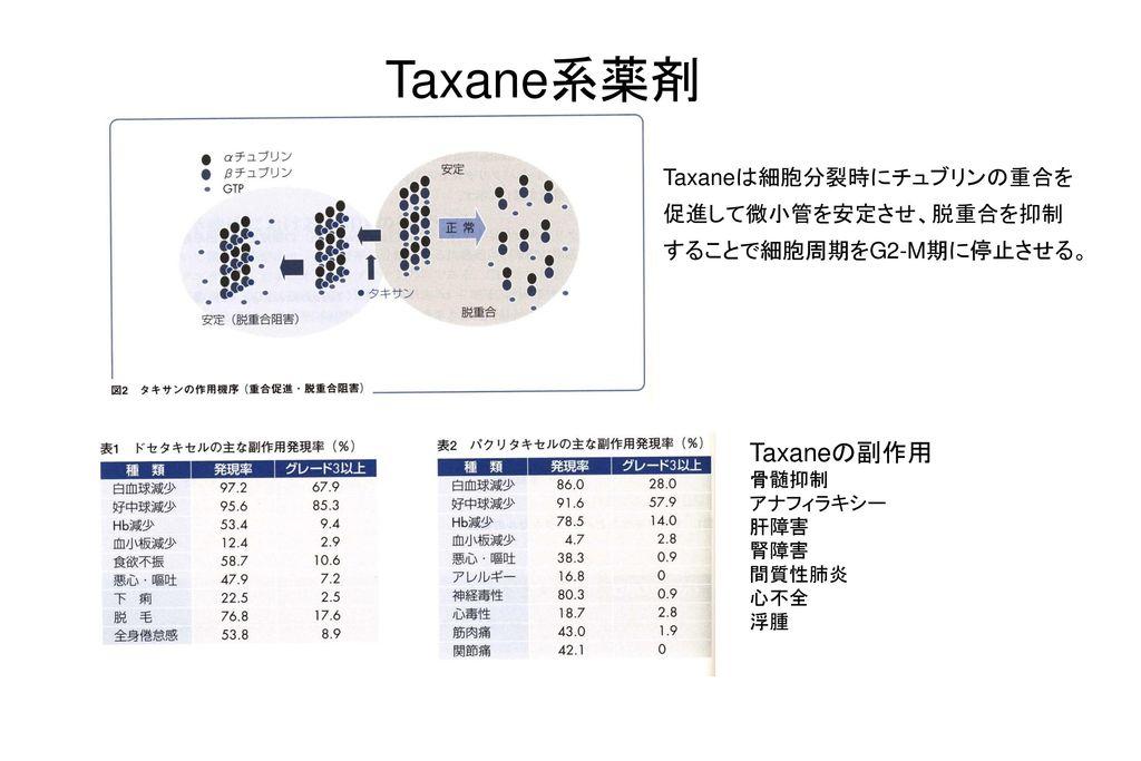 01/18/09 Taxane系薬剤. Taxaneは細胞分裂時にチュブリンの重合を促進して微小管を安定させ、脱重合を抑制することで細胞周期をG2-M期に停止させる。 Taxaneの副作用. 骨髄抑制.