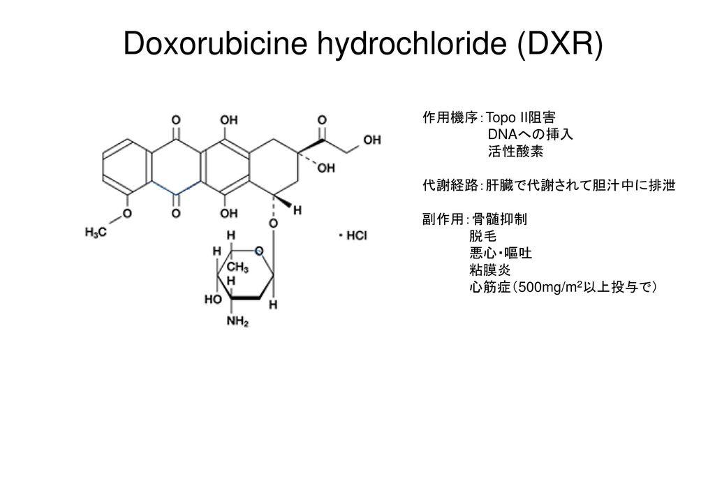 Doxorubicine hydrochloride (DXR)
